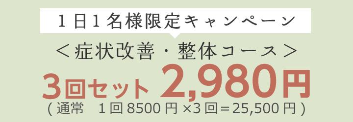 お試しキャンペーン3回セット2980円
